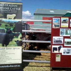 Ballarat Rural Expo, Ballarat Vic