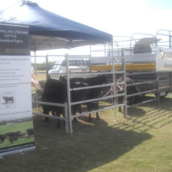 Landholders Day Yeppoon QLD