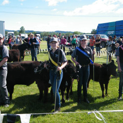 Northern Agricultural&Pastural Show at Rangiora NZ 2013