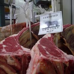 Urila CLB Balnarring Village Meats Vic