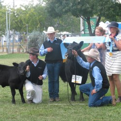 2015 Canberra Show